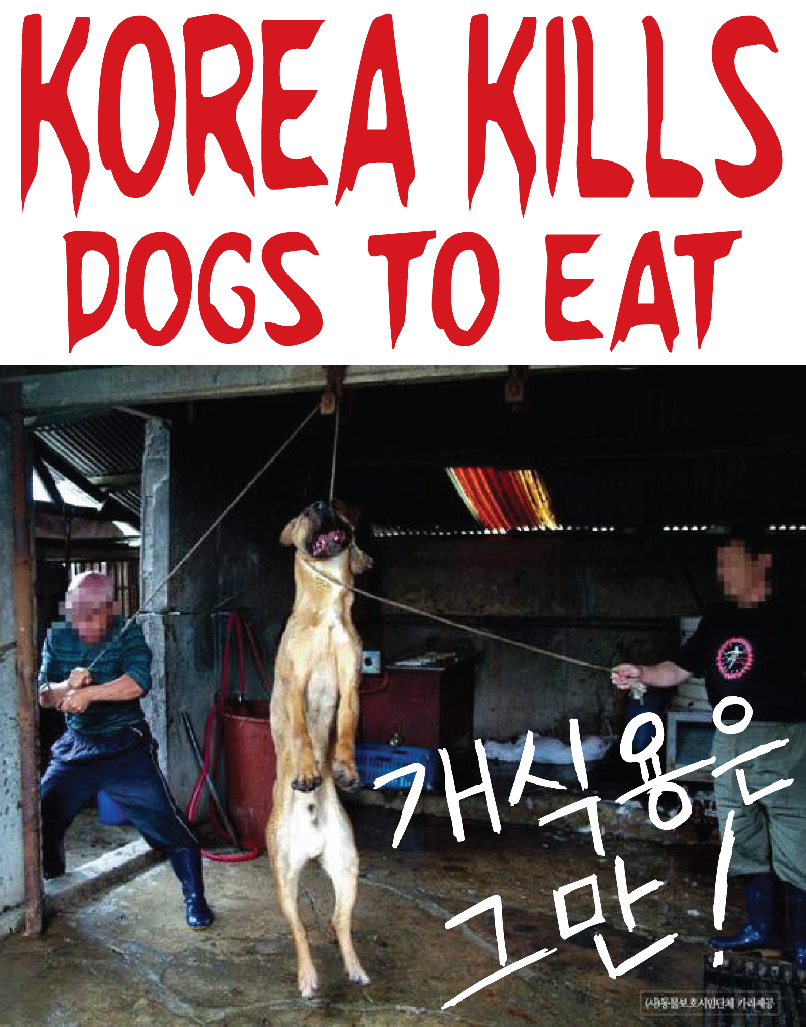 US sales: Korea Kills Dogs Protest Sign