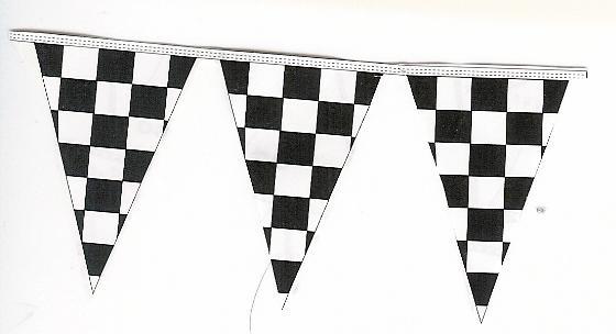 Checkered V-Pennant