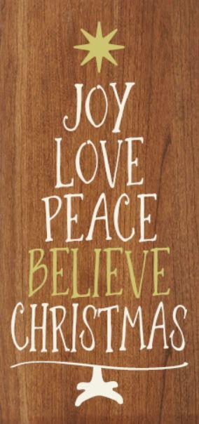 """""""Joy Peace Believe"""" DIY Christmas Wood Sign Kit (12inx24in)"""