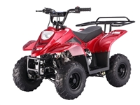 RED KODIAK YOUTH 110 ATV