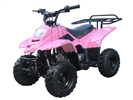 PINK KODIAK YOUTH 110 ATV