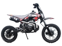 TAO DIRT BIKE 110