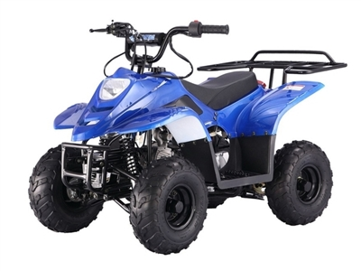 BLUE KODIAK YOUTH 110 ATV