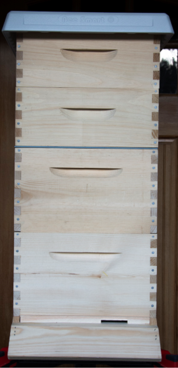 Complete Hive Setup: Wood Frames Plastic Foundation
